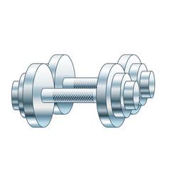 dumb bells vector image