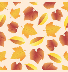 leaves collect-04 vector image vector image