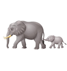 cute mother and baby elephant vector image