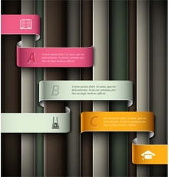 Education infographic vector image