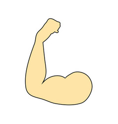 flat design icon of bicep vector image