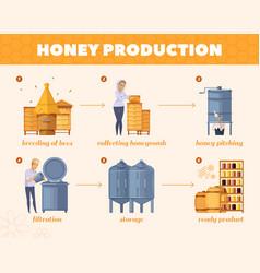 honey production process cartoon flowchart vector image