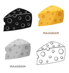 maasdamdifferent kinds of cheese single icon in vector image