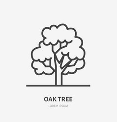 oak tree flat line icon thin sign of park vector image