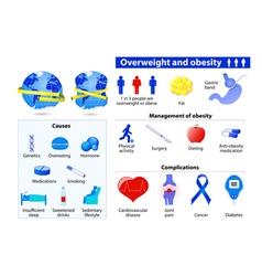 Obesity infographics vector