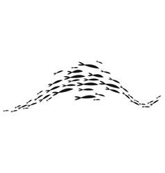 School fish a group silhouette fish swim vector