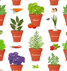 seamless texture with herbs planted in pots and vector image vector image