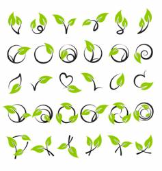 leaves design elements vector image vector image