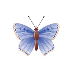 butterfly icon 3d realistic butterfly moth insect vector image