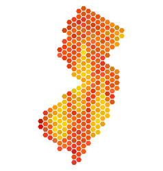 hot hexagon new jersey state map vector image