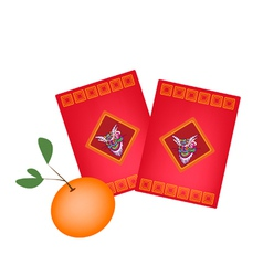 Red Envelopes and Orange for Chinese New Year vector image