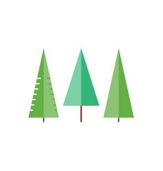 trees in flat style - spruce fir-tree pine vector image