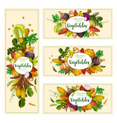 Vegetables and exotic tubers vector