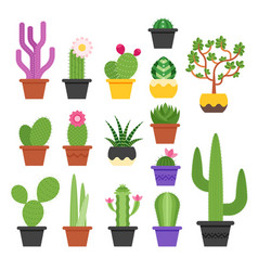 flat colorful set of various cactus vector image vector image