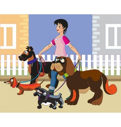 Walking of dogs vector image vector image