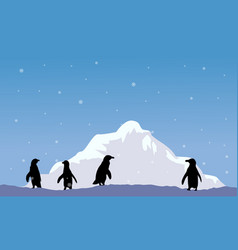 Mountain with penguin silhouette scenery vector
