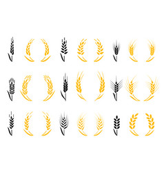 agriculture wheat wheat ears icons and logo set vector image