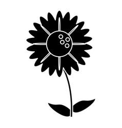 Silhouette gerbera flower natural vector