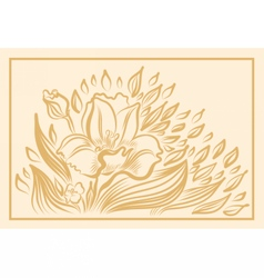 Narcissus spring flower drawing vector image