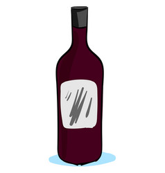 bottle red wine on white background vector image