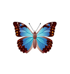 Butterfly icon 3d realistic morpho azure vector