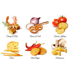 Crackers and snacks with flavoring ingredients vector