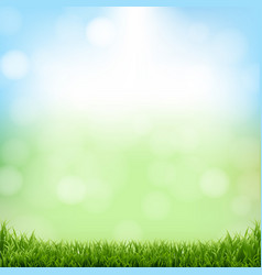 Nature green background with bokeh and grass vector