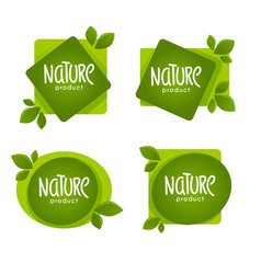 nature product organic green leaves emblems vector image
