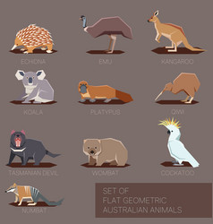 set flat geometric species australia vector image