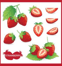 set of strawberry fruit with leaf in slice half vector image