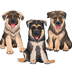 Smiling puppies dog German shepherd vector image
