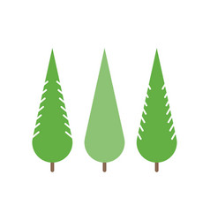 trees in flat style - spruce fir-tree pine vector image vector image