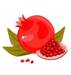 whole and cut pomegranate icon set flat cartoon vector image