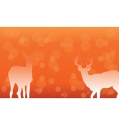 Deer with snow of silhouettes vector image