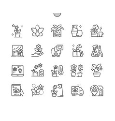 orchids well-crafted pixel perfect icons vector image