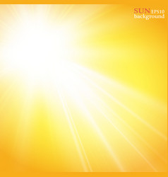 Summer background with a magnificent summer sun vector
