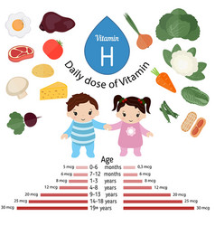Vitamin h or biotin infographic vitamin h or vector