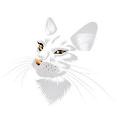 White cat with yellow eyes vector image