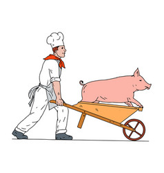 Chef pushing wheelbarrow and pig color drawing vector