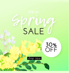 floral spring design with white and yellow flowers vector image