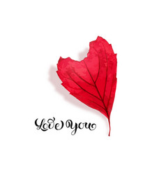 Red leaf in heart shape isolated valentines day vector