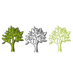 tree line drawing set vector image