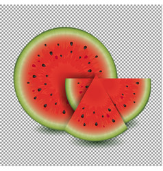 water melon with transparent background vector image