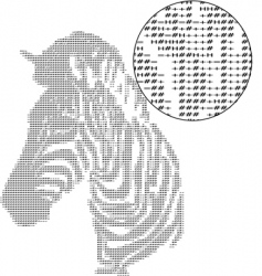 text zebra vector image
