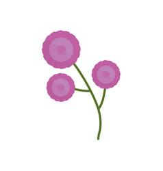 purple flower branch spring icon vector image vector image
