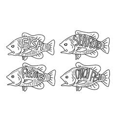 hand drawing fish vector image vector image