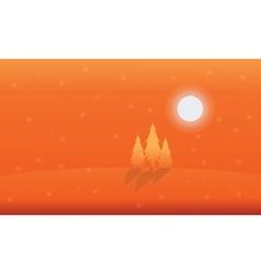 Landscape of spruce on orange backgrounds vector image vector image