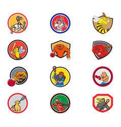cartoon animals sports activity mascot set vector image