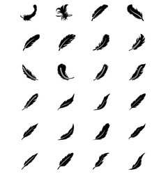 Feathers Solid Icons 2 vector