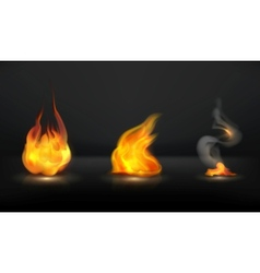 Flames set vector